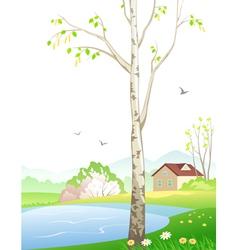 Spring birch vector
