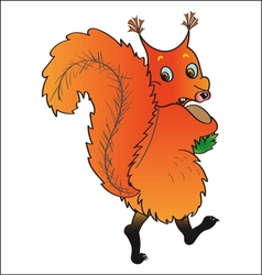 Scared squirrel vector