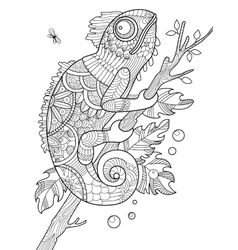 Chameleon coloring book for adults vector image vector image