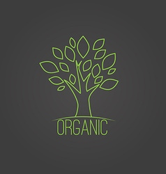 natural organic label in trendy linear style - vector image