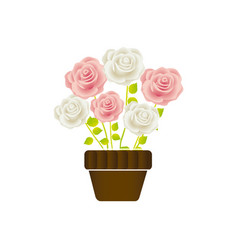 Roses in pot with stem and leaves floral design vector
