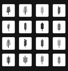 Ear corn icons set squares vector