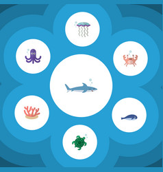 Flat icon marine set of algae medusa shark and vector