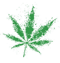 Grunge cannabis green leaf vector