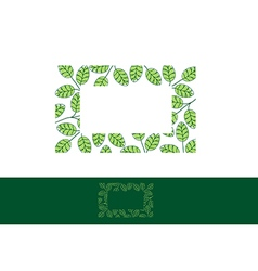Moringa Leaf Frame vector image