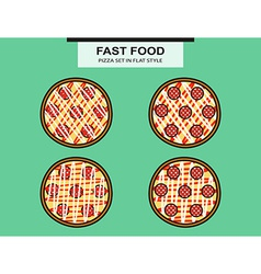Pizza set with a salami in flat style vector