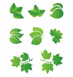green sheet vector image