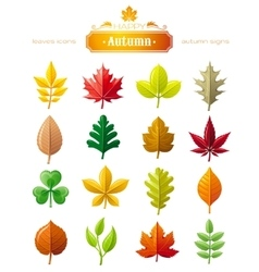 Leaves icon set for natural seasonal vector