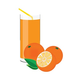 Orange juice and fruit vector image