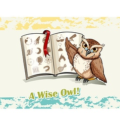 Owl reading a book vector