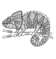 Chameleon coloring page vector
