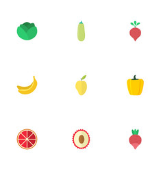 Flat icons turnip litchi pumpkin and other vector