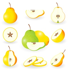 icon set pear vector image