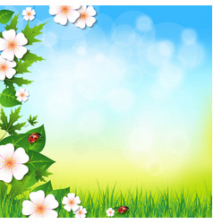 Spring or summer background with grass leaves and vector image
