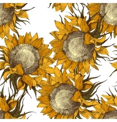 Seamless ornament with sunflowers vector