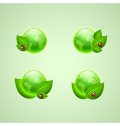 Leaves and ladybird with the globes vector