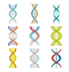 Dna and molecule symbols set vector