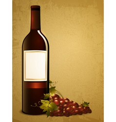 Bottle of red wine with grape vector