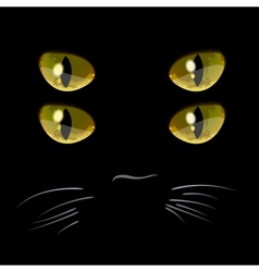 Closeup portrait of black cat with four eyes vector image vector image