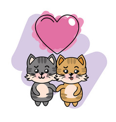 Cute couple of cats with heart vector