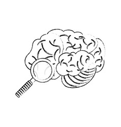 Sketch brain search discovery vector
