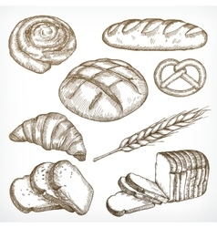 Bread sketches hand drawing vector