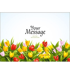 Flowers background with tulips vector image vector image