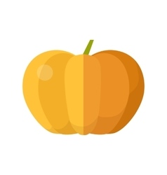 Pumpkin in flat style design vector
