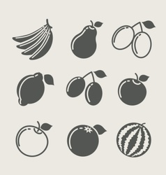 set of fruit food icon vector image vector image