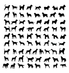 Silhouettes of dogs vector