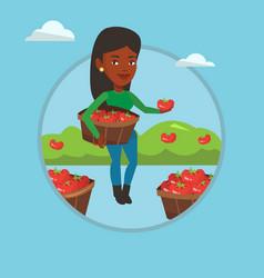Farmer collecting tomatos vector