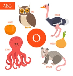 Letter O Cartoon alphabet for children Owl opossum vector image