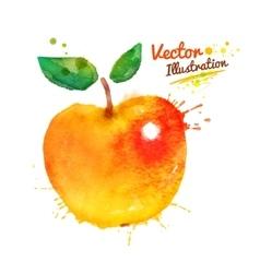 Watercolor apple vector