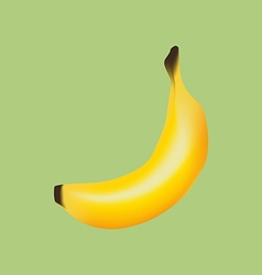 Banana fruit icon vector