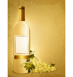 bottle of white wine vector image