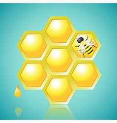 Honeycombs and bee on blue background vector