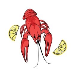 Boiled craw fish with lemon vector