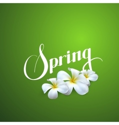 Spring season label vector