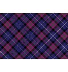 Pride of scotland tartan fabric diagonal texture vector image