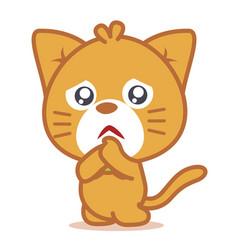 Sad cat pets of character vector