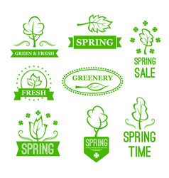 Icons of green nature trees for spring sale vector