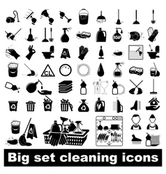 Big set Cleaning Icons vector image