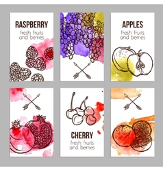 Cards with fruits vector