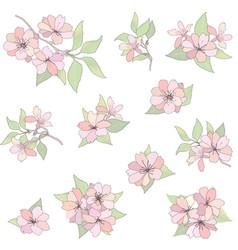 Floral bouquet set flower background nature vector