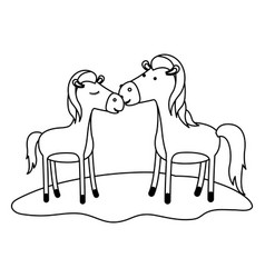 Horses couple over grass in monochrome silhouette vector