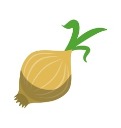 White onion vegetable nutrition sprout icon shadow vector