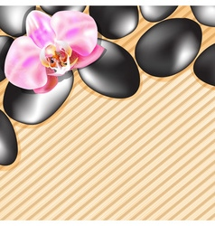 Spa stones on a bamboo background vector