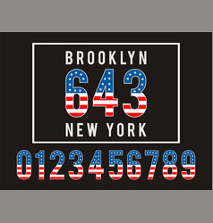 brooklyn textured flag usa vector image vector image