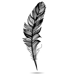 Monochrome feather isolate With white background vector image