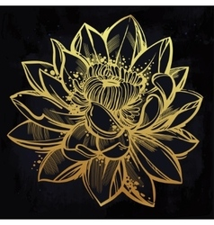 Sketch of lily lotus flower in linear style vector